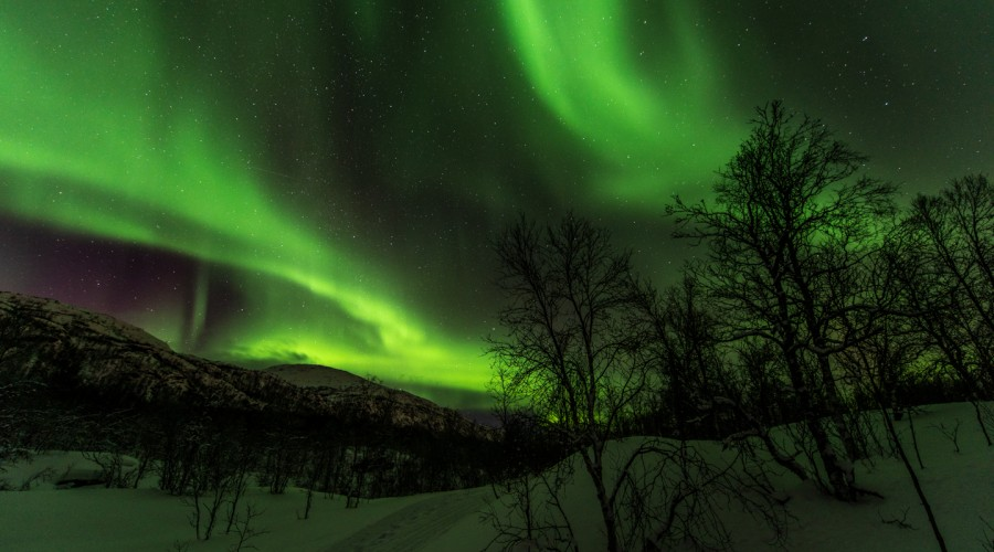 Northern Lights Landscape Photography Tour image