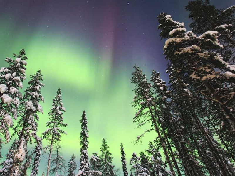 Northern Lights Photographic Adventure