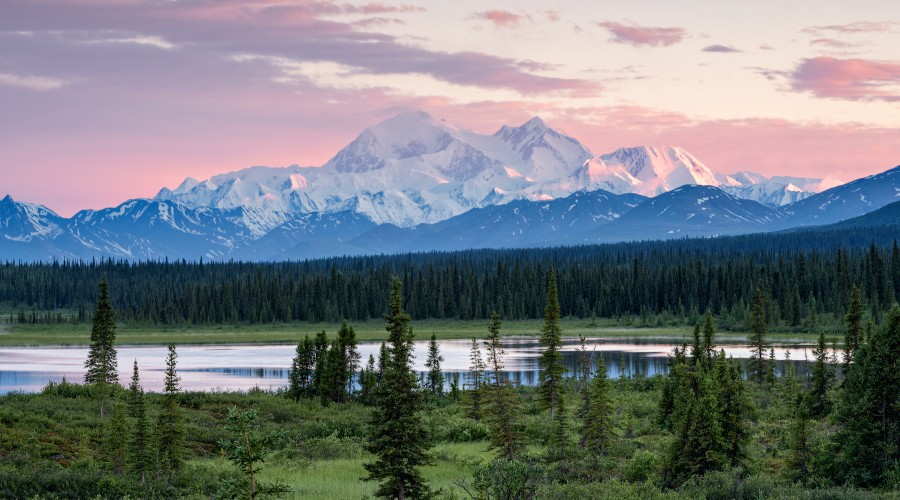 Denali Photography Workshop image