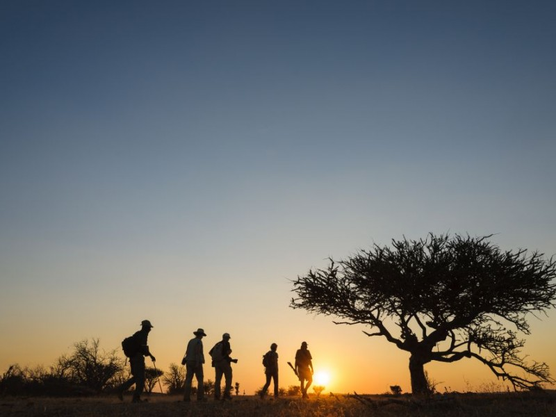 Wilderness and Astrophotography: 7-days in Magical Botswana