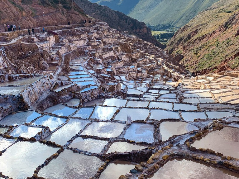 Peru: Amazon to Andes 2020