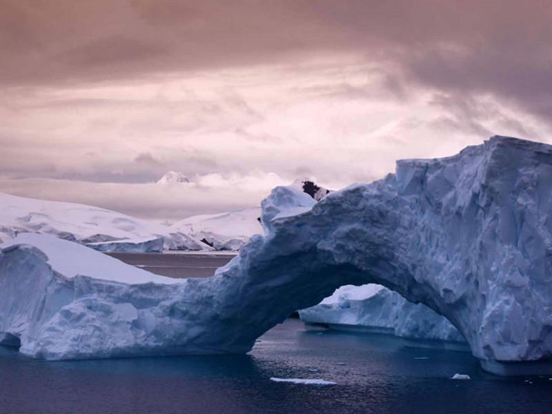Antarctica Wildlife Photography Expedition December 2020