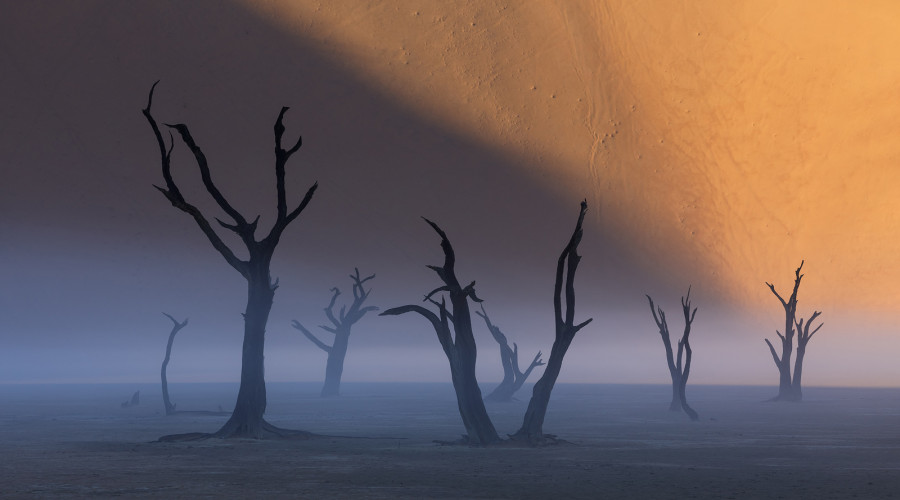 Wonders of Namibia: Landscape Photography Workshop image