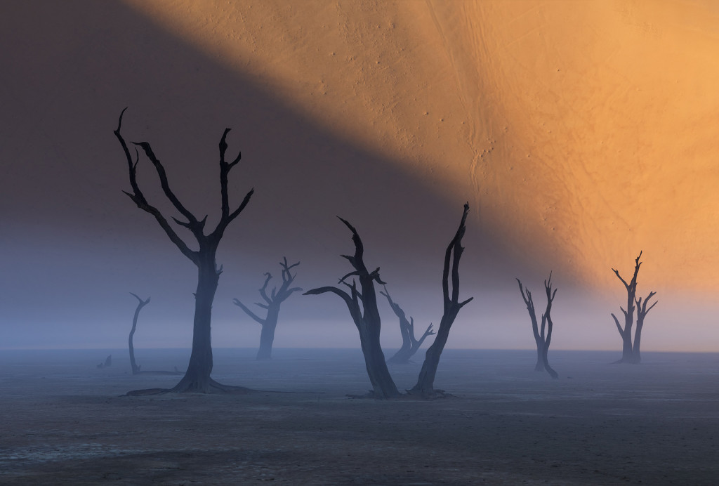Wonders of Namibia: Landscape Photography Workshop