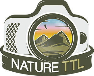 NatureTTL Logo