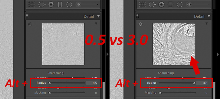 How_to_Sharpen_Lightroom-5