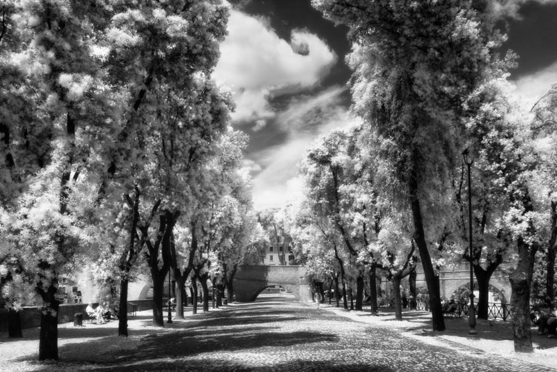 how to take infrared photos