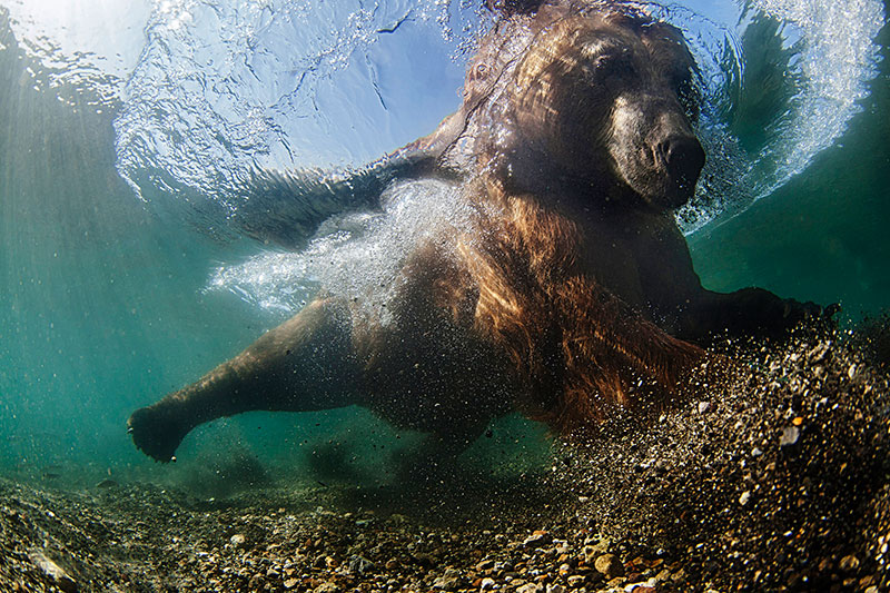 Underwater Wide Angle