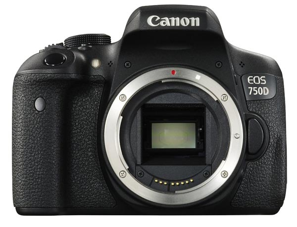 canon budget wildlife camera
