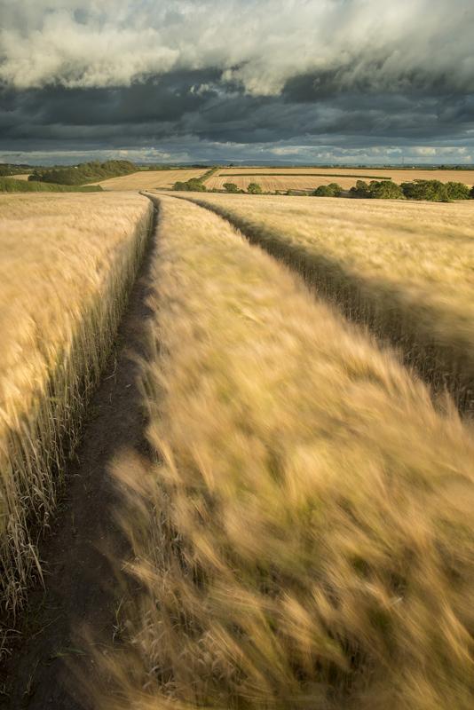 landscape vanishing points composition