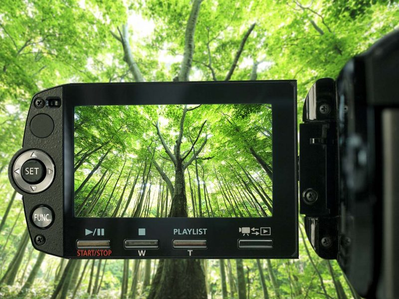 wildlife-video-kit