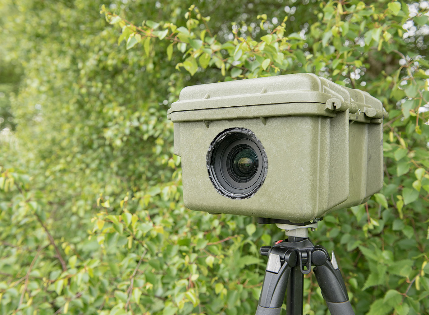 how to build a dslr camera trap tutorial