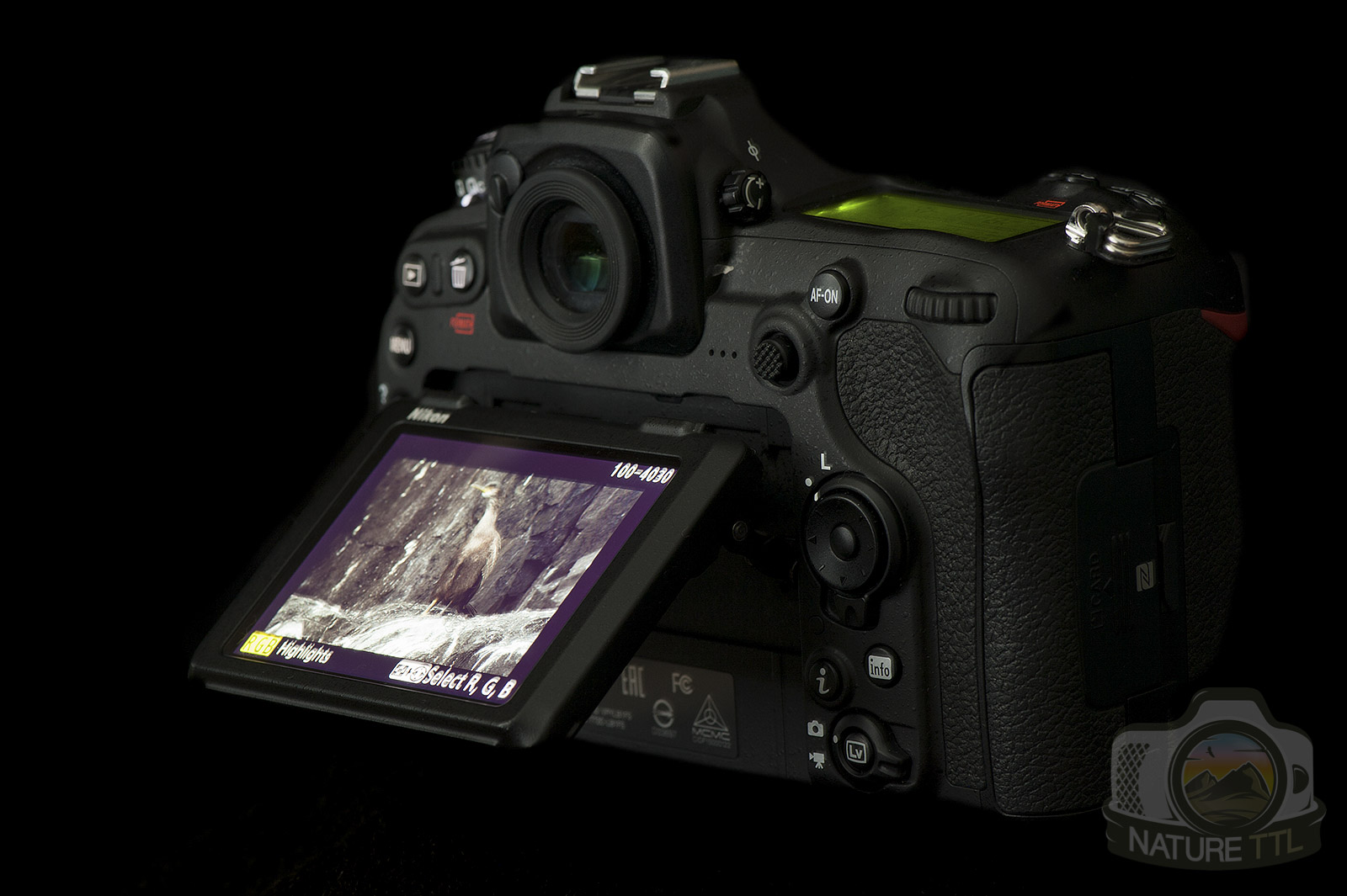 Nikon D500 Wildlife Review