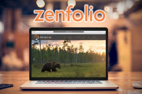 zenfolio-tips-for-website-customisation
