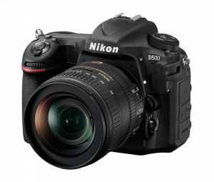 Best Wildlife Photography Cameras - Nikon D500