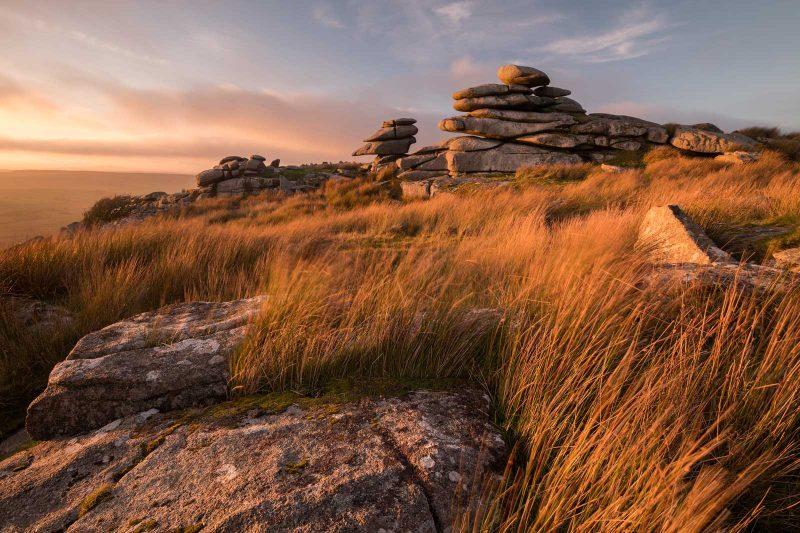 nikon d850 review wildlife landscape photography