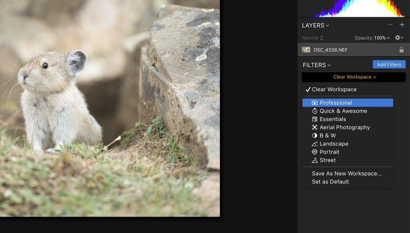 luminar 2018 raw editing photo