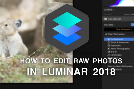 luminar-2018-edit-raw-photos-lead