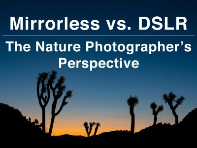 mirrorless vs dslr nature photography