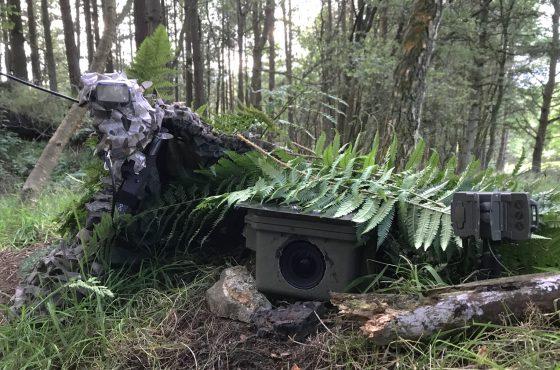 wildlife camera trap tips