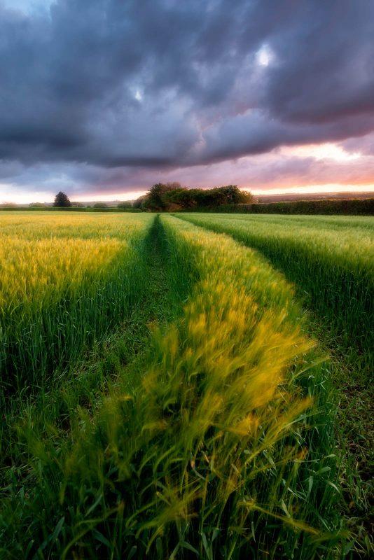 photograph-spring-landscapes