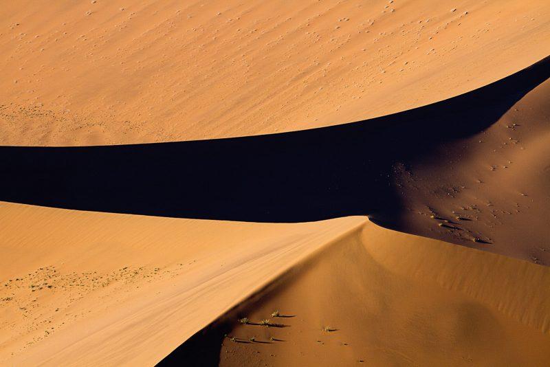 Dusk on the desert