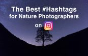 The Best Hashtags for Nature Photography on Instagram